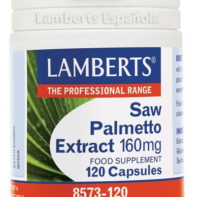 8573-120-lamberts-saw-palmetto